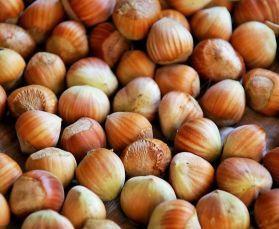 Italian Hazel Nuts In Shell - Human Grade 10kg