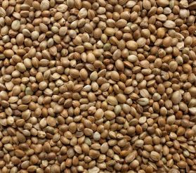 Hemp Seed - Bird High Quality 1kg