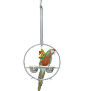 Play Ring Large Metal Hoop Parrot Stand