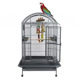 Rainforest Santos II Dome Top Large Parrot Cage