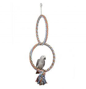 Large Parrot Coloured Double Hoops 40cm