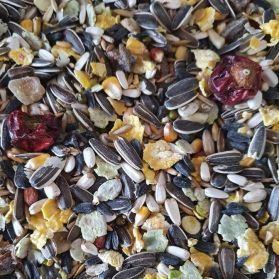 Marriages Fun Foraging Seed Mix