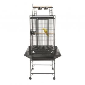 Rainforest Valencia Small Bird Play Top Cage