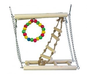 Fun Climber With Hoop And Ladder
