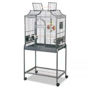 Rainforest Amazona I Bird Cage With Stand