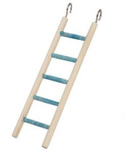 Small 5 Step Bird ladder