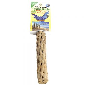 Cholla Cactus Wood Perch Medium