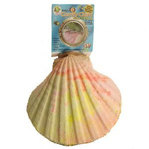 Pollys Comfy Clam Iodine Perch Large