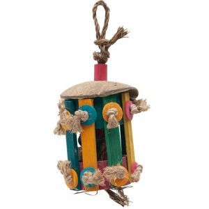 Tiki Hut Medium Bird Foraging Toy