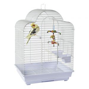 Rainforest Brasilia Budgie Cage