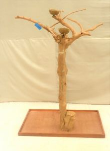JAVA TREE - SMALL - NATURAL HARDWOOD PARROT PLAYSTAND BS40242