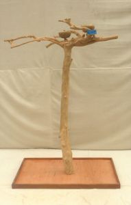 JAVA TREE - SMALL - NATURAL HARDWOOD PARROT PLAYSTAND BS40248