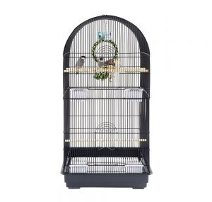 Rainforest Caracus Large Parakeet Cage