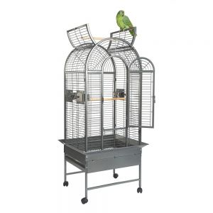 Rainforest Ecuador II Medium Bird Cage