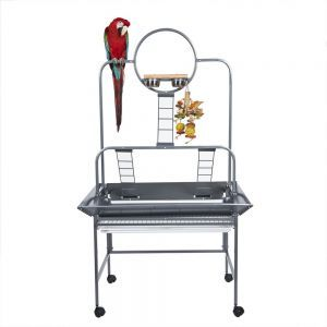 Rainforest Guyana Medium Bird Play Stand