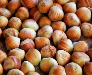 Small German Hazel Nuts In Shell - Human Grade1kg