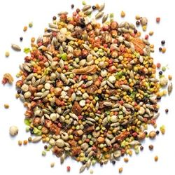 Zupreem Pure Fun Small Bird Food 2lb
