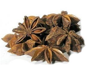 Goldenfeast Star Anise Bird Treat 1.5oz
