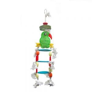 Parrot Loofah Bird Ladder