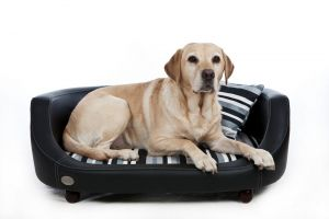 Chester & Wells Oxford II Large Black Dog Bed