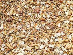 Tidymix Parakeet Diet - High Quality Seed Blend 1Kg
