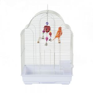 Rainforest San Felipe Budgie Cage