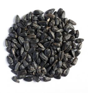 Black Sunflower Seed Bird Treat - 1kg