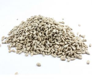 Hulled Sunflower Seeds 100g - Healthy Bird Treat