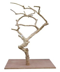 Deluxe Java Tree 0005 - Hardwood Bird Stand