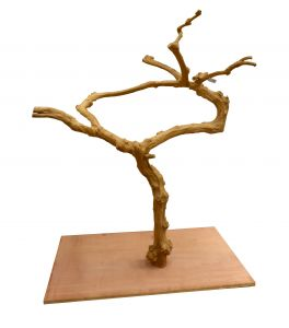 Deluxe Java Tree 0006 - Hardwood Bird Stand