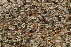 Pellets V Seed